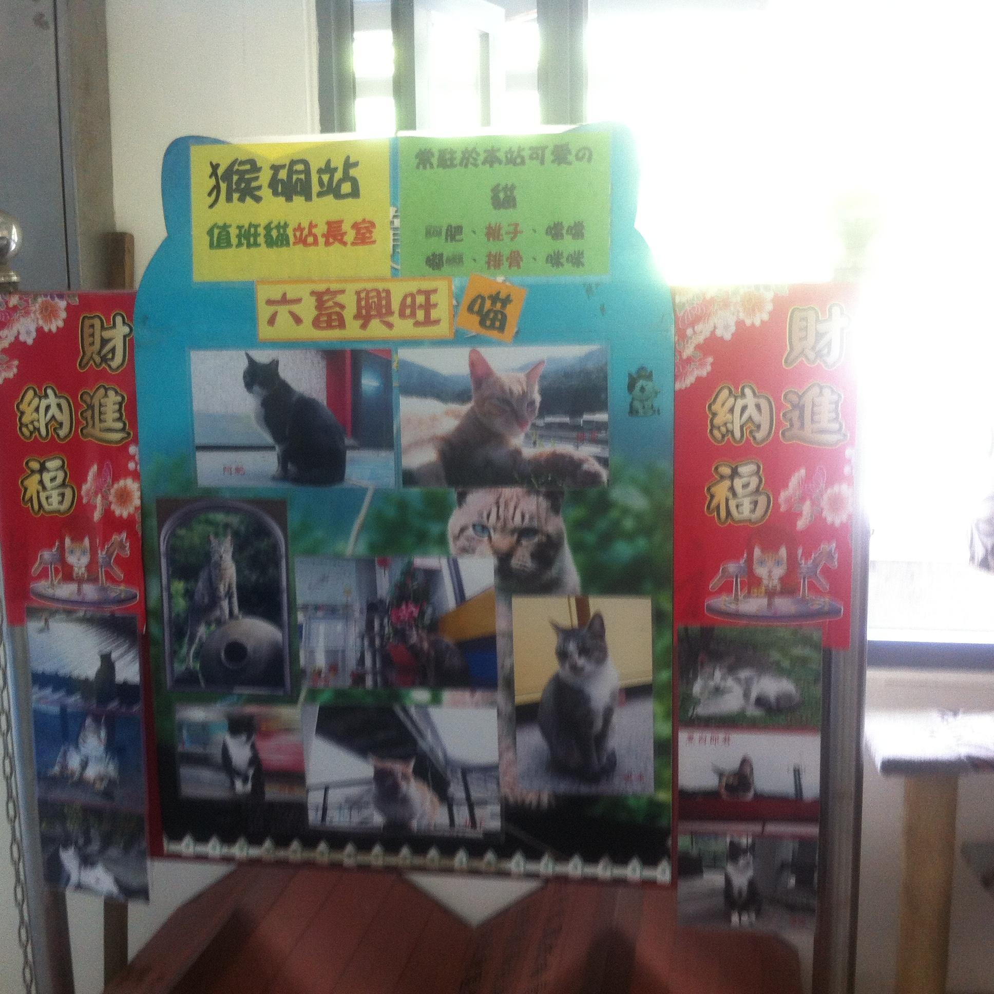 【猫好き】猫がたくさんいる猫村「猴硐駅周辺」に行ってみた♪