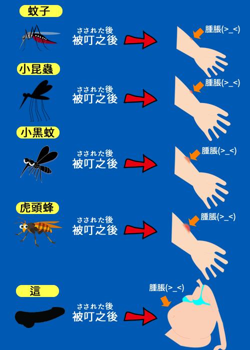 台湾で刺されると膨らんで腫れてしまう危険な5つの生き物はどれ?